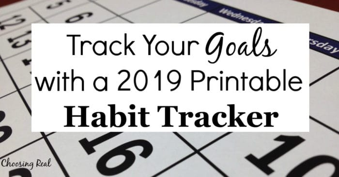 Using this 2019 habit tracker calendar can help you meet your daily goals. Simply print out calendar and mark off each day you meet your daily goal.